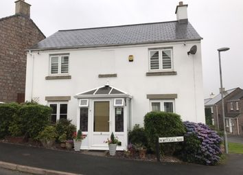 Thumbnail 4 bedroom detached house for sale in Portugal Way, Okehampton