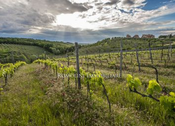 Thumbnail Farm for sale in Grosseto, Tuscany, Italy