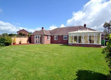 Thumbnail 3 bed detached bungalow for sale in Sudbury Road, Newton, Sudbury