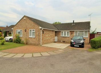Thumbnail 3 bed bungalow for sale in Hobbs Drive, Boxted, Colchester