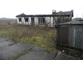 Thumbnail Detached bungalow for sale in Wisbech Road, Westry, March