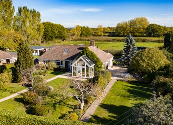 Thumbnail 3 bed detached bungalow for sale in Inlands Road, Nutbourne, Chichester