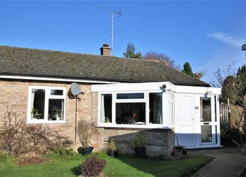 Thumbnail 2 bed bungalow to rent in Holland Park, Cheveley, Newmarket
