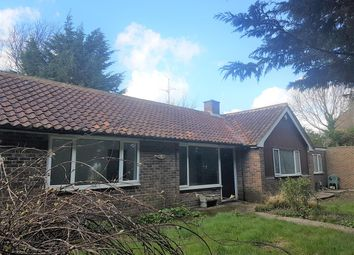 Thumbnail 3 bed bungalow to rent in New Dover Road, Canterbury