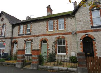 Thumbnail 2 bed terraced house for sale in The Avenue, Newton Abbot
