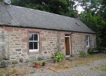 Thumbnail 1 bed detached house to rent in Gardens Cottage Deuchar Farm, Fern, Noranside, Forfar