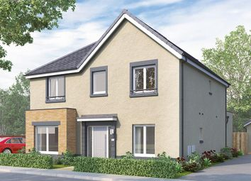 "Thumbnail 4 bedroom detached house for sale in ""The Tetbury"" at Brora Crescent, Hamilton"