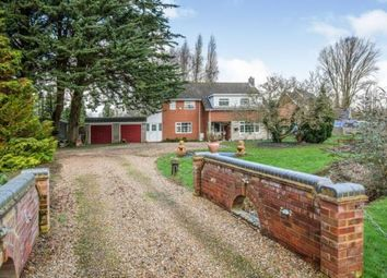 Thumbnail 4 bed detached house for sale in Forncett St. Peter, Norwich, Norfolk
