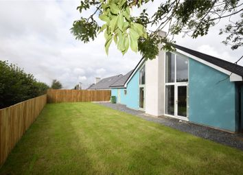 Thumbnail 3 bedroom bungalow for sale in West Lane, Dolton, Winkleigh