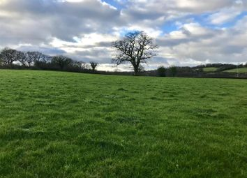 Thumbnail Land for sale in Talley Road, Llandeilo
