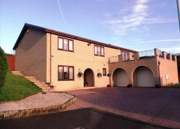 Thumbnail 4 bed detached house for sale in Witton Garth, Peterlee