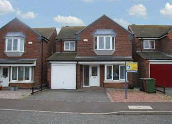 Thumbnail 4 bedroom detached house to rent in Westminster Gardens, Eye, Peterborough