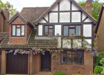 Thumbnail 6 bed detached house for sale in Magpie Close, Bexhill-On-Sea