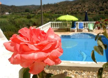 Thumbnail 4 bed detached house for sale in Alcoutim E Pereiro, Alcoutim E Pereiro, Alcoutim
