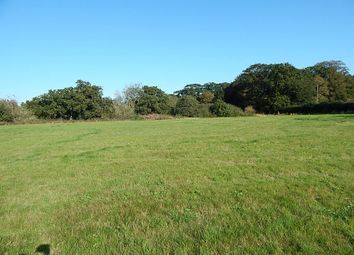 Thumbnail Land for sale in Land Off, Yarmouth Road, North Walsham, Norfolk