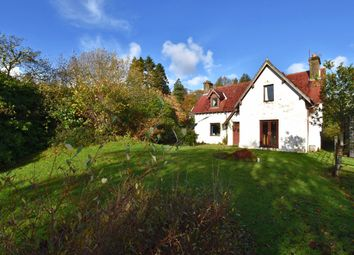 Thumbnail 3 bed detached house for sale in Glenborrodale, Acharacle
