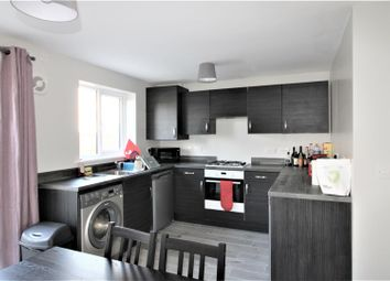 Thumbnail 6 bed property to rent in Booth Gardens, Lancaster