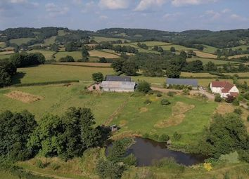 Thumbnail 5 bed detached house for sale in Cwmcarvan, Monmouth