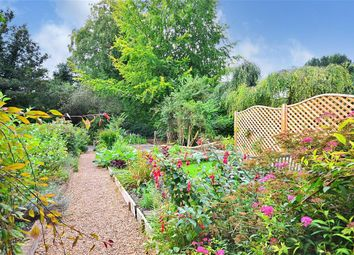 Thumbnail 2 bedroom property for sale in West Meon, Petersfield, Hampshire