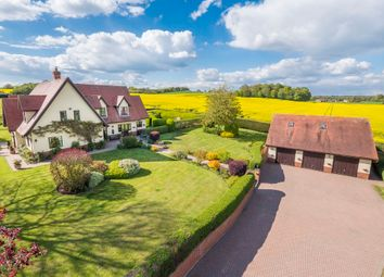Thumbnail 5 bed detached house for sale in Great Henny, Sudbury, Suffolk