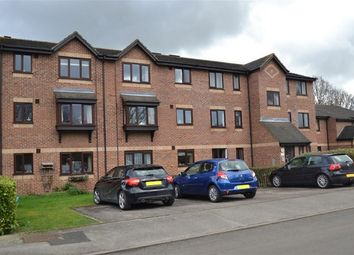 Thumbnail 2 bed flat for sale in Moorymead Close, Watton At Stone, Hertford