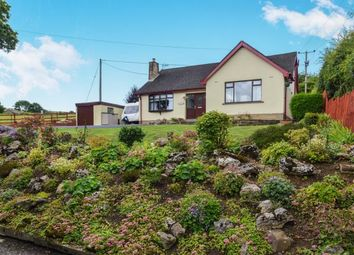 Thumbnail 4 bed bungalow for sale in Denny Beck, Lancaster, Lancashire