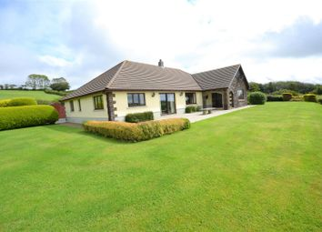 Thumbnail 4 bed detached bungalow for sale in Llanboidy, Whitland