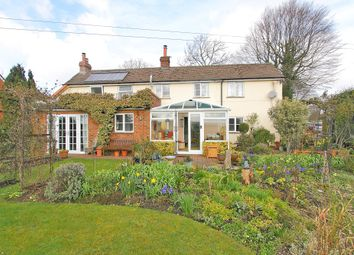 Thumbnail 3 bed cottage for sale in Newfound, Basingstoke