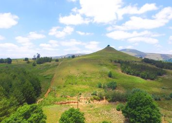Thumbnail Farm for sale in Underberg, Kwazulu-Natal, South Africa