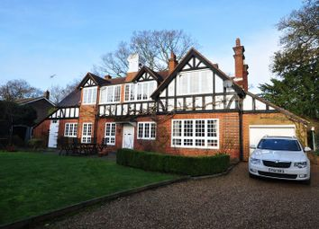 Thumbnail 4 bed detached house to rent in Chobham Road, Frimley, Camberley
