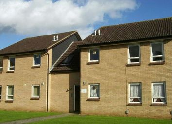 Thumbnail Studio for sale in Downwood Close, Cherry Lodge, Northampton