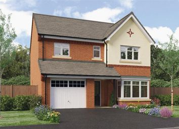 "Thumbnail 4 bed detached house for sale in ""Ashbery"" at Westfield Crescent, Mosborough, Sheffield"
