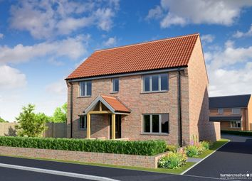 Thumbnail 3 bed detached house for sale in Back Lane, Mileham