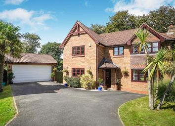 Thumbnail 5 bed detached house for sale in Derriford, Plymouth, Devon