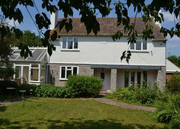 Thumbnail 3 bed detached house to rent in Ashmoor Drove, Wookey, Wells
