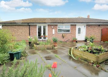 Thumbnail 4 bed detached bungalow to rent in Burton Fields Road, Stamford Bridge, York