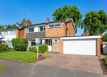 Thumbnail 4 bed detached house for sale in Bunting Close, Horsham
