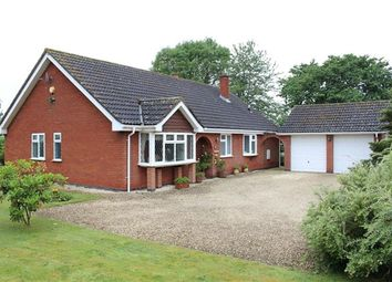Thumbnail 4 bed detached bungalow for sale in Snarestone Road, Newton Burgoland, Coalville