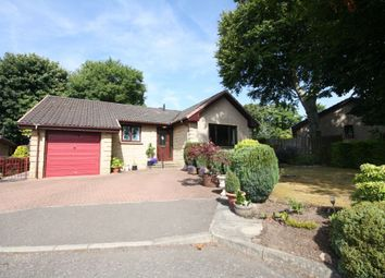 Thumbnail 3 bedroom detached bungalow for sale in 10 Woodlands Grove, Lower Bathville, Armadale