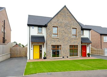 Thumbnail 3 bed semi-detached house for sale in Copper Green, Green Road, Conlig