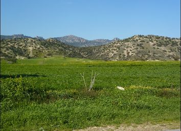 Thumbnail Land for sale in Bogaz, Cyprus
