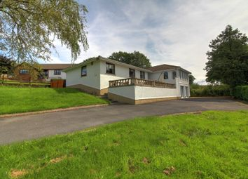 Thumbnail 4 bedroom detached house for sale in Porthyrhyd, Carmarthen