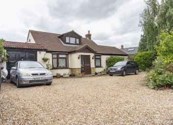 Thumbnail 3 bed bungalow for sale in Bedford Road, Wilstead, Bedford