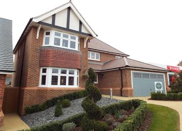 Thumbnail 4 bed detached house to rent in Barlow Road, Hamilton