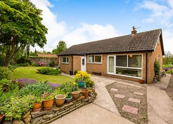 Thumbnail 3 bed bungalow for sale in D The Green, High Coniscliffe, Darlington