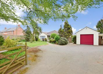 3 bed detached bungalow for sale in Roundstone Lane, Angmering, West Sussex BN16