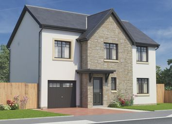 Thumbnail 4 bed detached house for sale in Hamilton Road, Mount Vernon, Glasgow