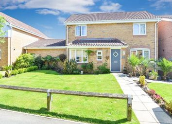 Thumbnail 3 bed link-detached house for sale in Newport, Isle Of Wight, .