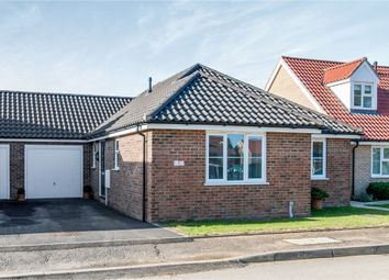 Thumbnail 3 bed detached bungalow for sale in Bloodhound Road, Watton, Thetford