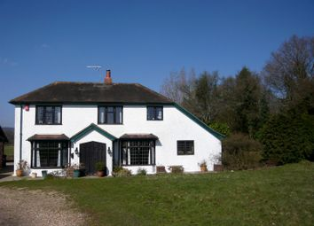 Thumbnail 3 bed detached house to rent in Forest Green, Dorking